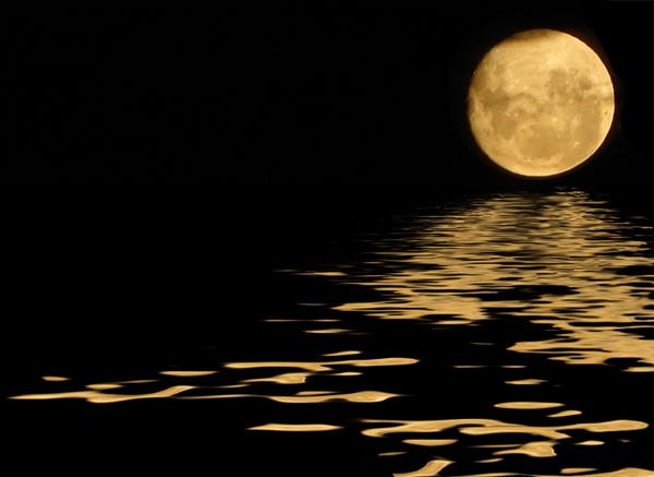 La Luna y sus fases